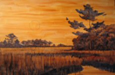 Moonlight Spartina: establishing values with broad washes