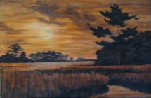 Moonlight Spartina: refining values