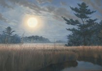 """""""Moonlight Spartina"""" completed"""